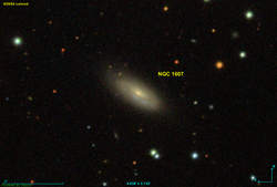 NGC 1607.png