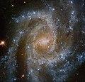NGC 2835 .jpg