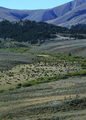 NRCSMT01026 - Montana (4901)(NRCS Photo Gallery).tif