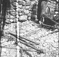 Na saneh peljejo oralo, Borjana. (detajl) 1951.jpg