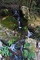 Nanzen-ji (2636732264).jpg