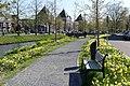 Nassausingel Breda P1360713.jpg