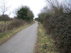 National Cycle Network Route 23 - geograph.org.uk - 121044.jpg