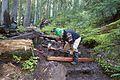 National Public Lands Day 2014 at Mount Rainier National Park (062), Narada.jpg