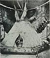 Natural history (1919) (14781802235).jpg