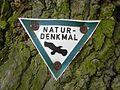 Naturdenkmal Landkreis Kassel 6.33.464 2017-06-10 e.JPG