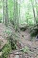 Naturpark Südeifel (Eifel); Teufelsschlucht 4.jpg