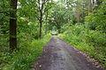 Naturschutzgebiet Rehburger Moor IMG 3194.jpg