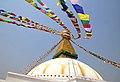Nepal 2018-03-24 (40760225395).jpg