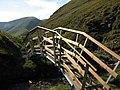 New footbridge - geograph.org.uk - 237470.jpg