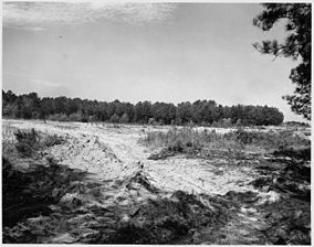 Submarginal private lands inside the Sumter National Forest which should be in trees instead of terraced for cultivation. (April 1941)