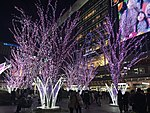Night view in front of Hakata Station 20180311-1.jpg