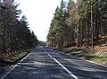 North Deeside road - geograph.org.uk - 377948.jpg