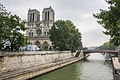 Notre-Dame de Paris and the Petit-Pont, 26 August 2013.jpg