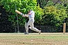Nuthurst CC v. Henfield CC at Mannings Heath, West Sussex, England 029.jpg