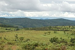 Nyika National Park, Malawi (2489516573).jpg
