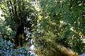 Obergurig - Spree (Bömische Brücke) 01 ies.jpg