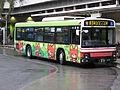 Odakyubus-08-e9257a.jpg