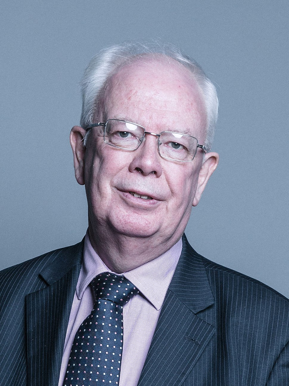 Official portrait of Lord Wallace of Tankerness crop 2