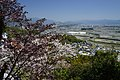 Okocho Yahata, Nankoku, Kochi Prefecture 783-0044, Japan - panoramio (5).jpg