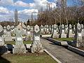Olšanské hřbitovy, Rudá armáda3.jpg