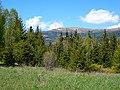 Orlová zo Šumiaca, máj 2014 - panoramio.jpg