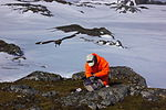 Ornithologist at work IMG 0741.JPG