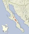 Otospermophilus atricapillus distribution map.png