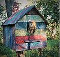 Owl-house-recycled-plastic.jpg