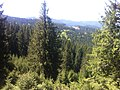 Păltiniș 550001, Romania - panoramio (5).jpg