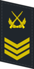 PLANF-Collar-0708-2CSGT.png