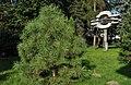 PL - Mielec - rzeźba Kantata mielecka (Ewelina Michalska), park Oborskich - Kroton 002.JPG