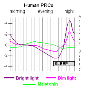 Phase response curve - Phase response curves for light and for melatonin administration