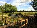 Paddock, Woolhamtpon - geograph.org.uk - 29423.jpg