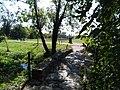 Parc Saint-Hubert (5).jpg