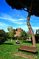 Parco di Villa Gordiani.jpg