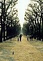 Paris, Jardin del Plantes 1976 05.jpg