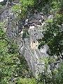 Paro Taktsang, Taktsang Palphug Monastery, Tiger's Nest -views from the trekking path- during LGFC - Bhutan 2019 (298).jpg