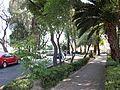 Parque Guadalupe 01.jpg