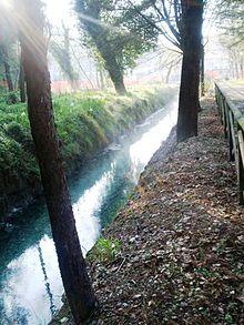 Il Torrente Seneta nei pressi del Rio Grassano.