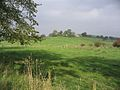Pasture near Corrie Bridge - geograph.org.uk - 261473.jpg