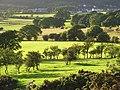 Pastures, Bassenthwaite - geograph.org.uk - 901945.jpg