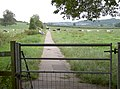 Path to Dulcote - not the Monarch's Way though - geograph.org.uk - 2557646.jpg