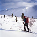 Paul skiing in Dalton Pass (17089612056).jpg