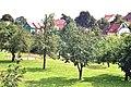 Penzlin, Streuobstwiese.jpg