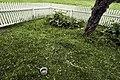 PermaLiv naturhagen 07-06-20.jpg