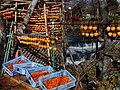 Persimmon drying in Fujinomiya,Shizuoka,Japan(吊るし柿白糸の滝下流) DSCF0008.jpg