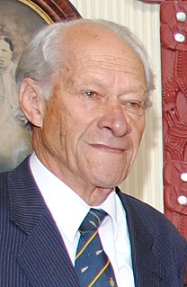 Peter Tapsell (New Zealand politician)