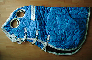 Horse blanket - A hood, showing openings for eyes and ears