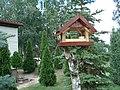 Pianki, karmik dla ptaków na działce - panoramio.jpg